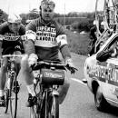 Courtesy Flandria Bikes