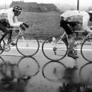 Roger de Leginck riding in a Flemish Mirror. Photo: CorVos/Pez