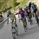 Basso leads the mice into the Pain Cave