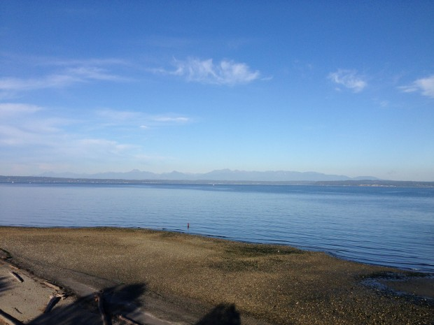 Puget Sound just after sunrise.