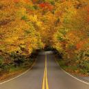 Vermont in Autumn. Photo via @LazyJackFlash.