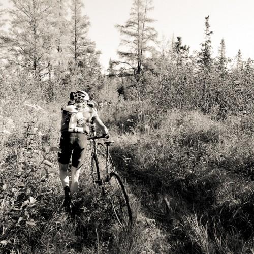 Into the Wild  photo-Jeremy Kershaw