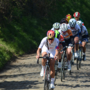 Queen Lizzie leads the chasing group up the Oude Kwaremont